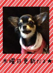 hatsukaichi140206g.jpg
