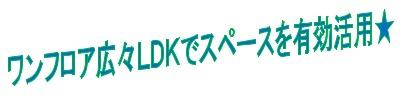kyotokameoka120712s2a.jpg