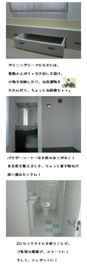 yamagatashinjyou120119s3d.jpg