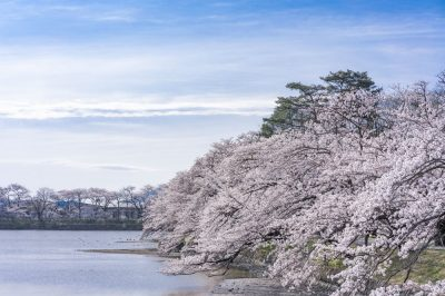 住みやすさを大切にするファミリー世帯におすすめ!福島県でお気に入りのエリアを見つけよう