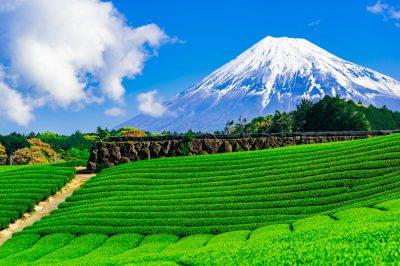 住みやすさが魅力なのは?静岡県のファミリー向けおすすめ住宅エリア