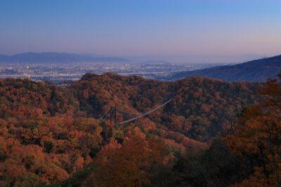 大阪府交野市は魅力ある街!住みやすさに注目してみよう