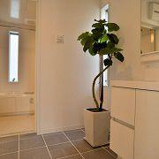 ゆったり足を伸ばせるお風呂に一面鏡張りの洗面化粧台。一日の疲れを癒してくれる快適な空間に