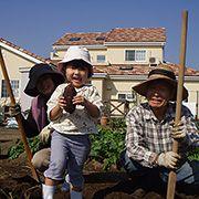 じいじ、ばあばの家庭菜園も充実しております。収穫の時は、お孫さん達がお手伝いをします。