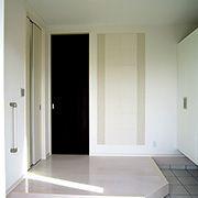 家族やお客様を迎え入れる玄関。全室の扉をハイドアで仕上げて大空間をサポートしています。