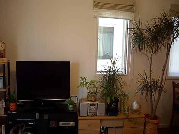 ダイニングテーブル横はパソコンスペース。テレビ回りはご主人様の趣味で観葉植物を置き、癒し感たっぷりです。