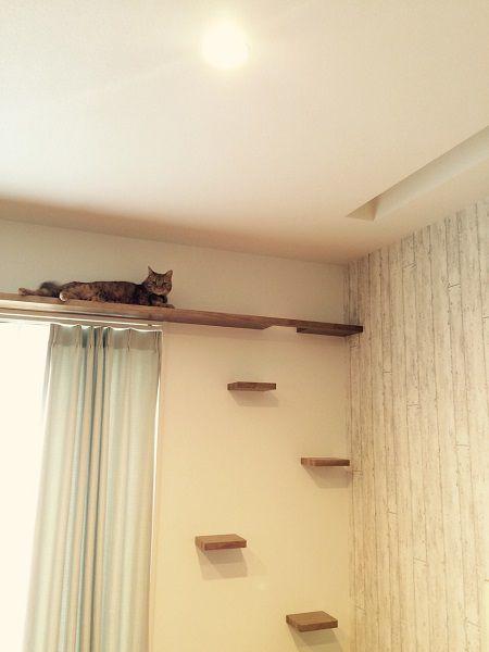 キャットウォークと共に、ご夫婦が希望されたのは造り付けのキャットタワー。リビングでくつろぐとき、猫ちゃんたちも一緒に過ごしてくれるように。また、そんなくつろいでいる姿も絵になるようにと、リビングとダイニングを緩やかに間仕切る柱に猫ちゃん様のステージを設置しました。