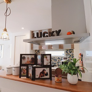 キッチンのカウンターには、家族写真や植物を飾っています。