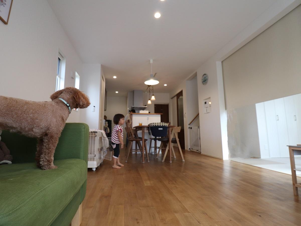 無垢の床は子どもにも犬にも優しい♪