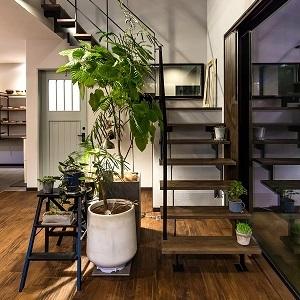 向こう側が見えるスリット階段と大きい吹き抜けで開放感たっぷりです! 階段サイドの植物もこだわりポイントの一つとなっています。